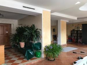 details-immobilie-23842